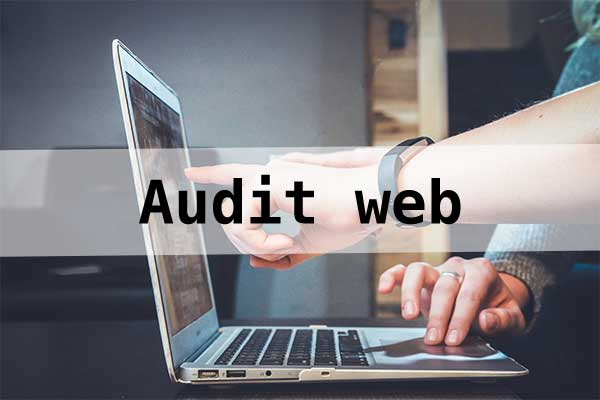 Analyse et audit de sites web : référencement, performance, ...